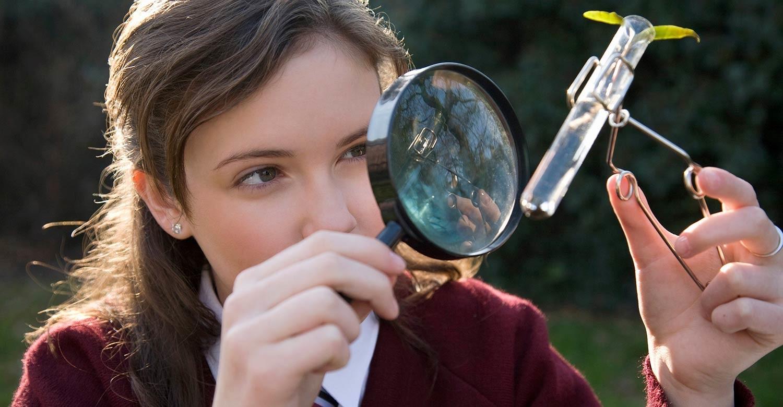 От генетики до оригами: пять необычных предметов в школах США