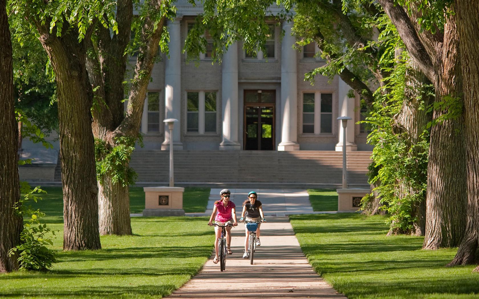 10 мифов об университетском образовании в США
