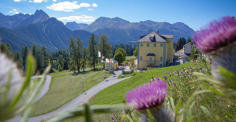 Топ-школы Швейцарии: эксклюзивное образование в Альпах