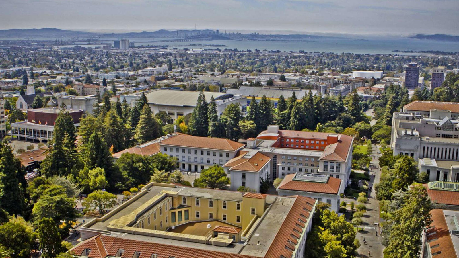 Калифорнийское лето в Berkeley: академическая программа
