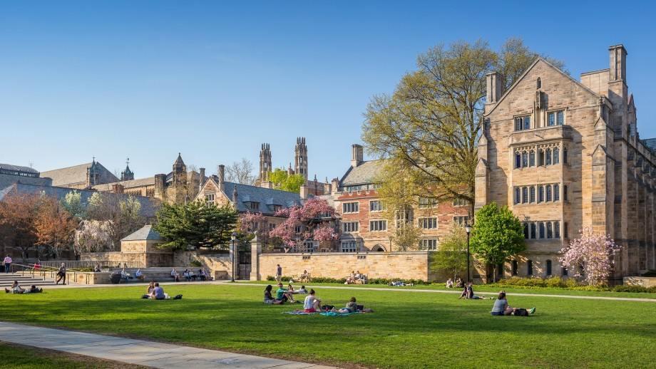 Полина о самом интересном из жизни студента Yale University