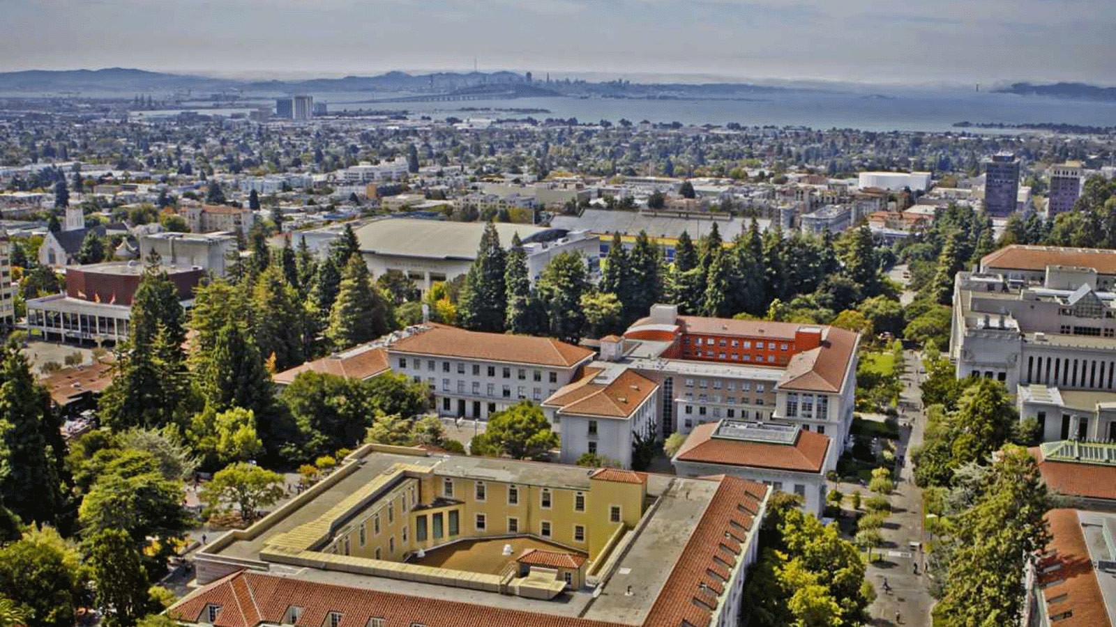 UC Berkeley: английский язык + спорт и отдых