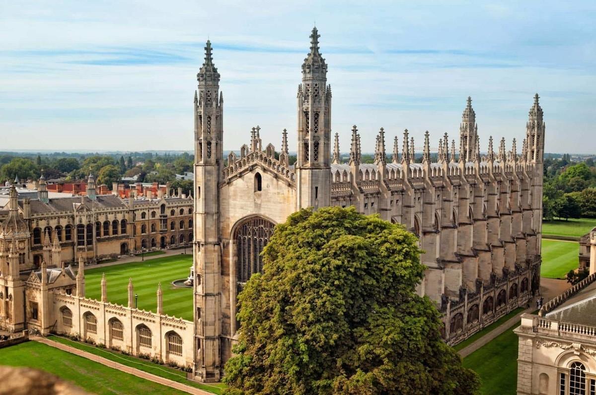 Cambridge University: Введение в медицину