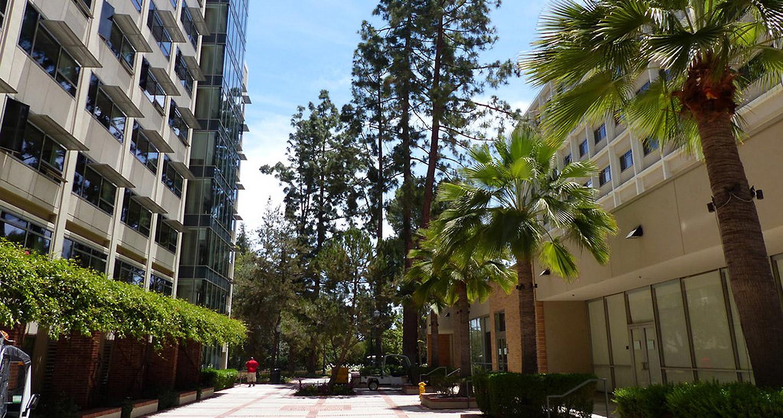 University of California: Интенсивные академии