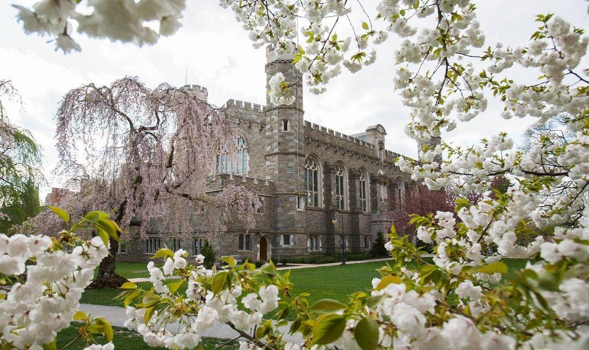 Bryn Mawr College: Академические предметы