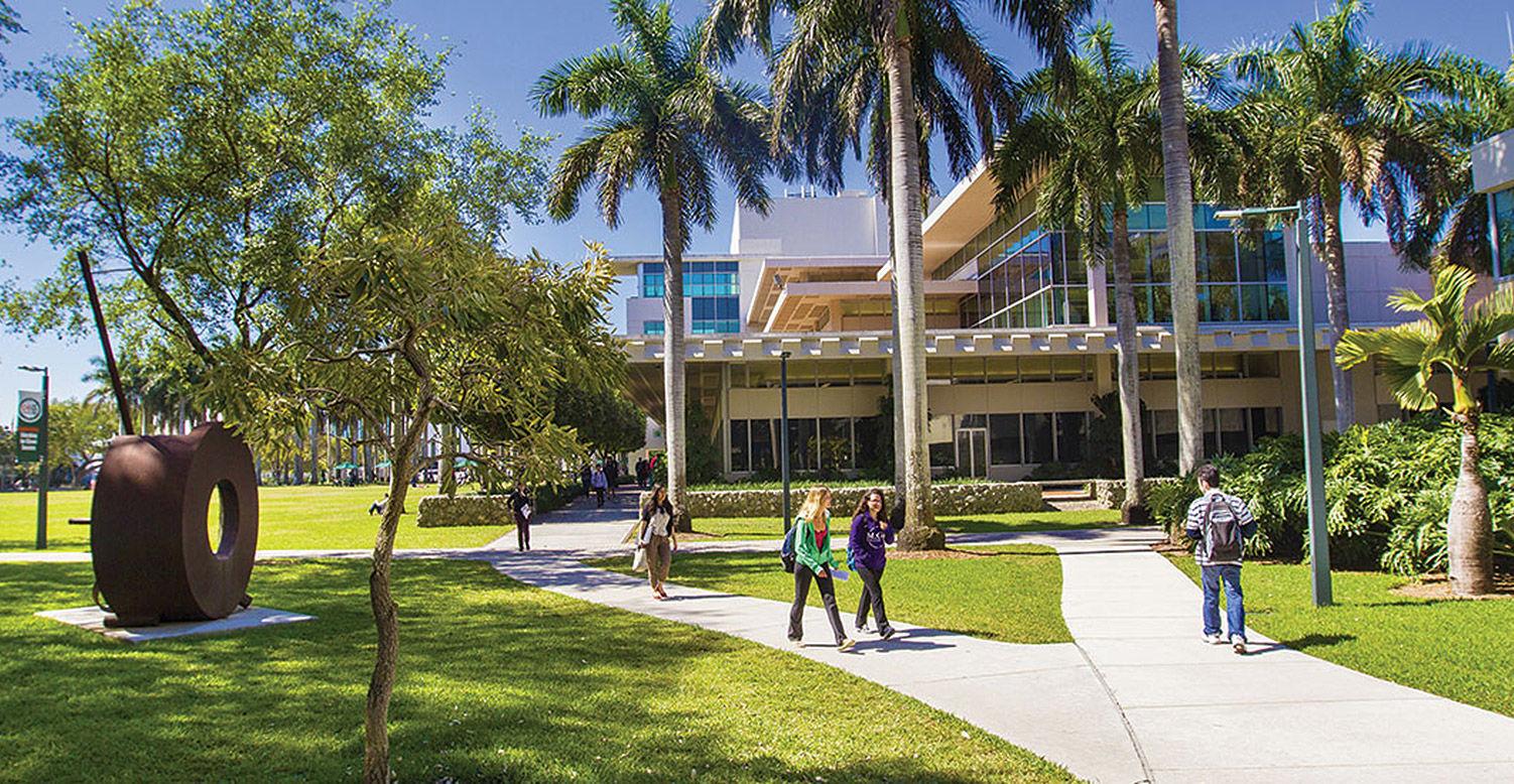 University of Miami: Академические предметы