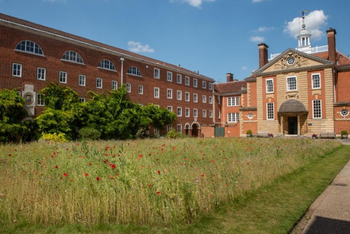 Ascot College: Подготовка к Trinity Exam