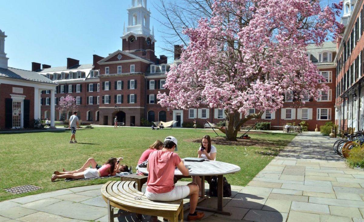 Yale University: академические предметы + спорт и творчество