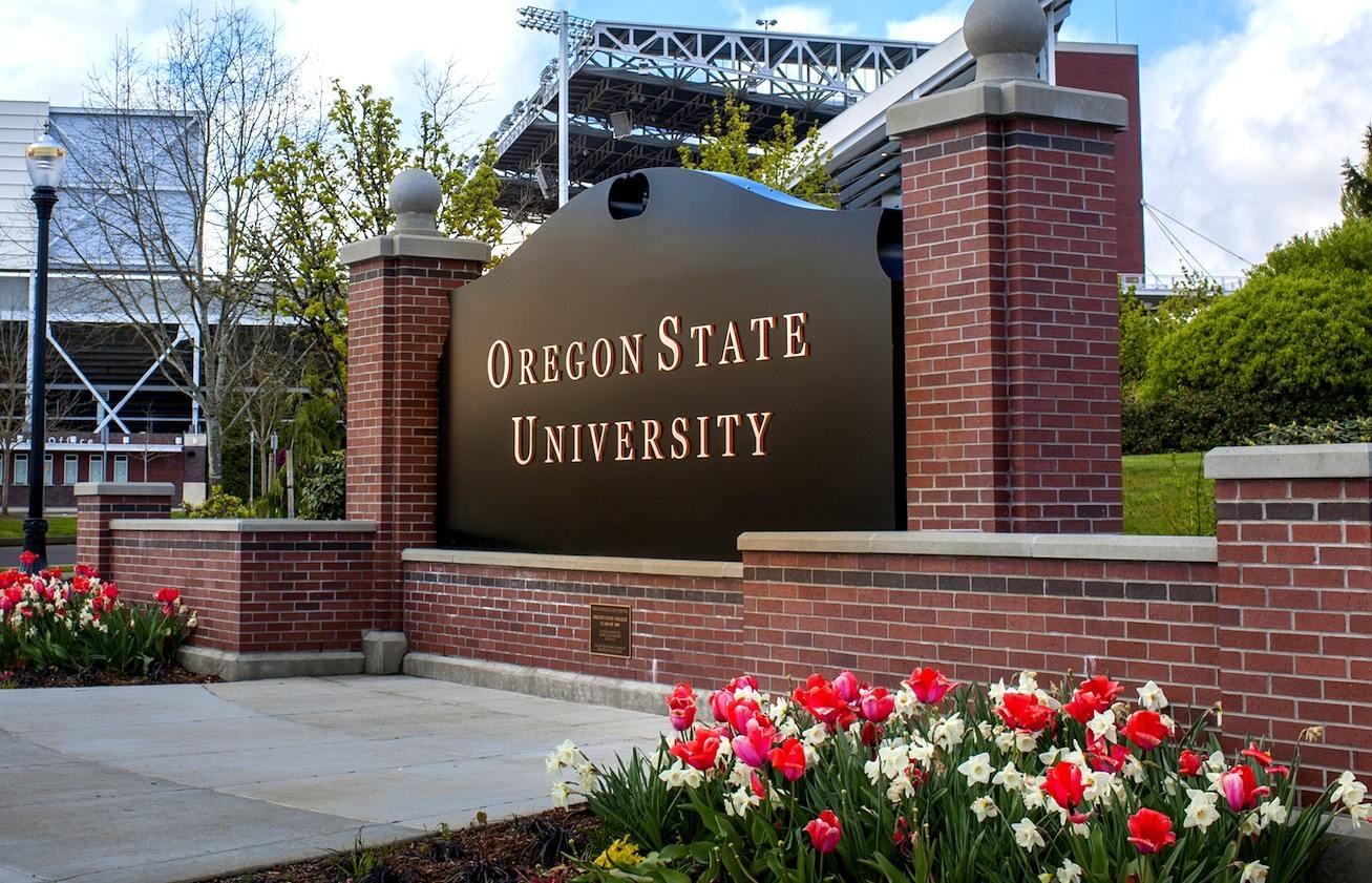 Oregon State University: Чему старшеклассников учат в американских вузах
