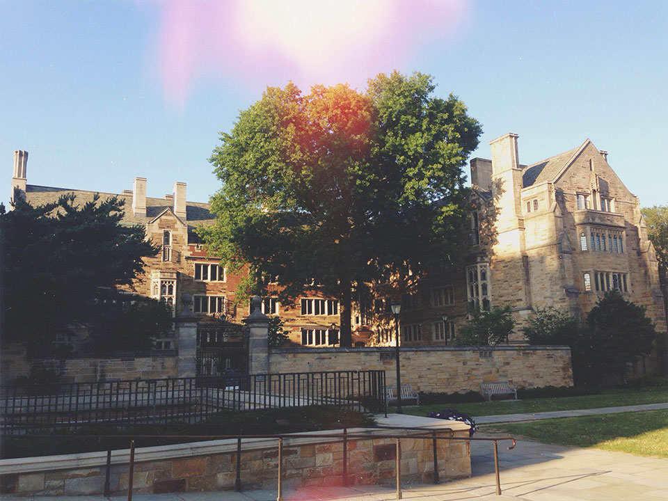 Астрофизика, рисование и математика в Yale University