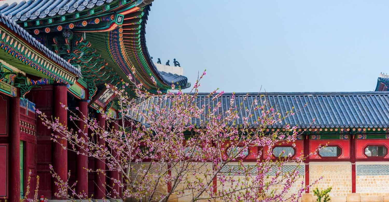 Южная Корея: 5000 лет истории и культуры