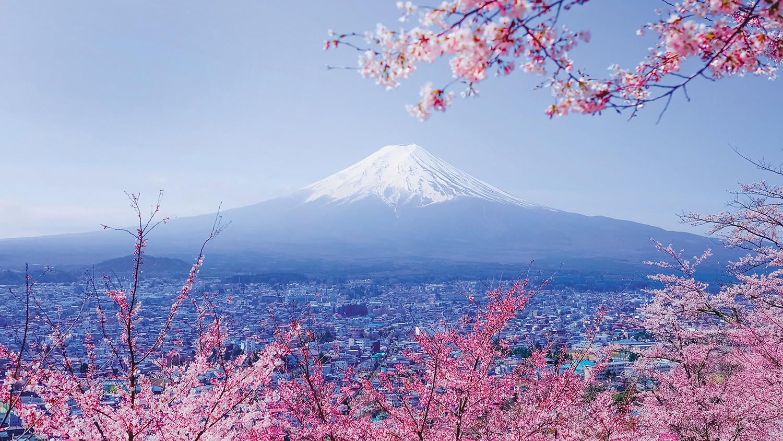 Япония: традиции и инновации